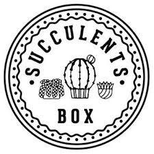 Succulents Box Coupons